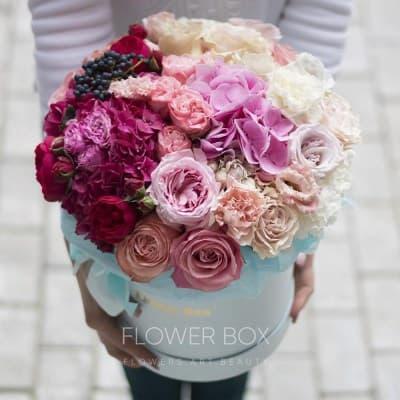 Где купить цветы мимоза в саранске — img 2